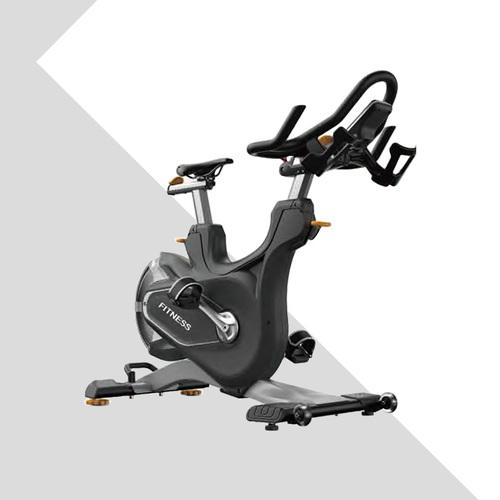 LZX-D06豪华磁阻动感单车