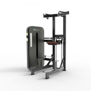 LZX-1009单双杠训练器