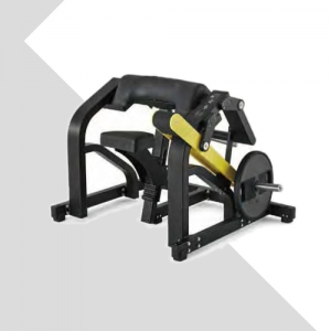LZX-3012二头肌训练器