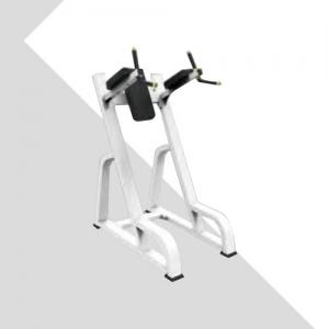 LZX-1036双杠提膝