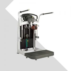LZX-2009•臀部复合训练器