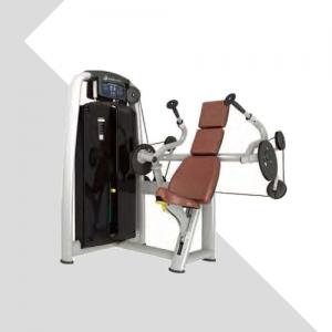 LZX-2011•三头肌训练器